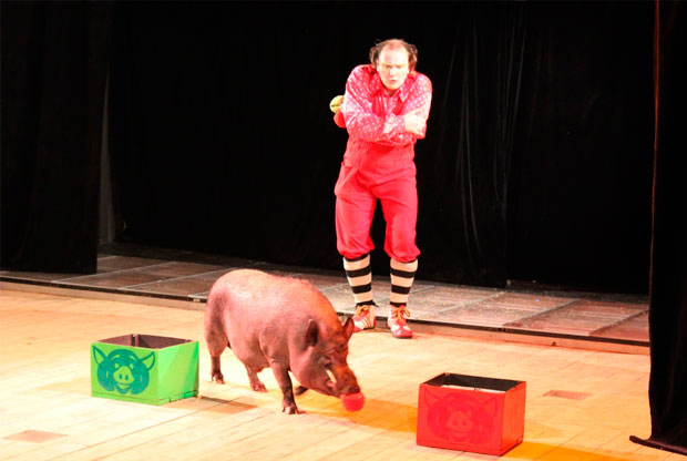 ?Шоу «Карнавал магии» в Театре «Мюзик-холл» - слайд 1