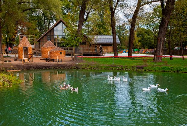 ?Летний лагерь на «Городской ферме» ВДНХ - слайд 1