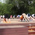 В «Музеоне» и парке Горького c 1 июня начинаются бесплатные занятия йогой