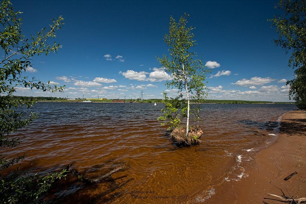 Куда отправиться на природу в Подмосковье: 5 мест с чистой природой вокруг Москвы