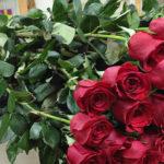 Длинные розы