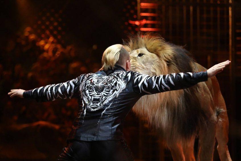Цирк (проспект Вернадского) с новогодним цирковым шоу «Песчаная сказка»