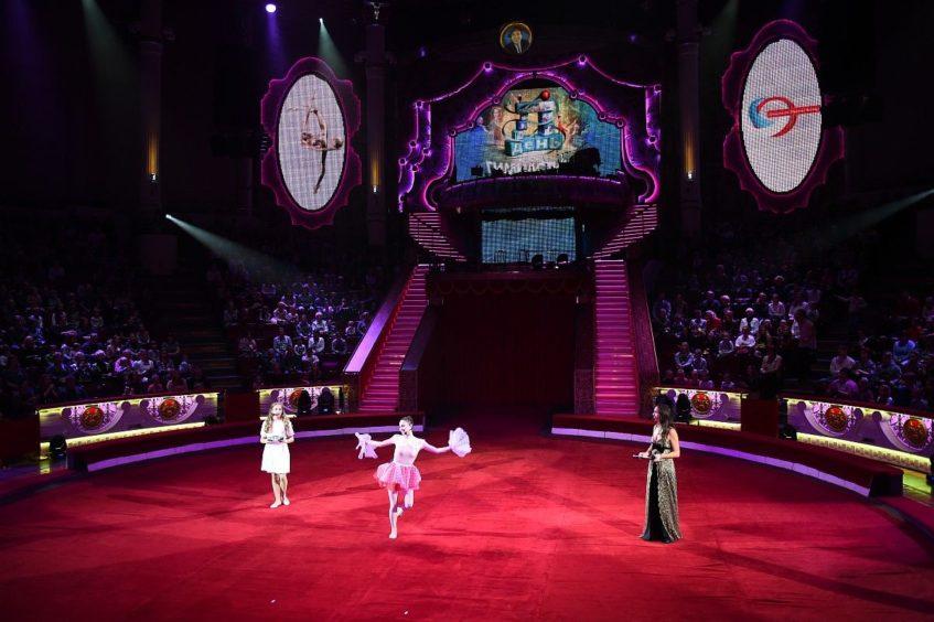 Московский Цирк Никулина