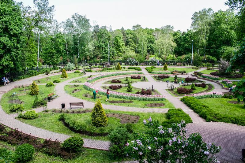 фото парка сокольники в москве