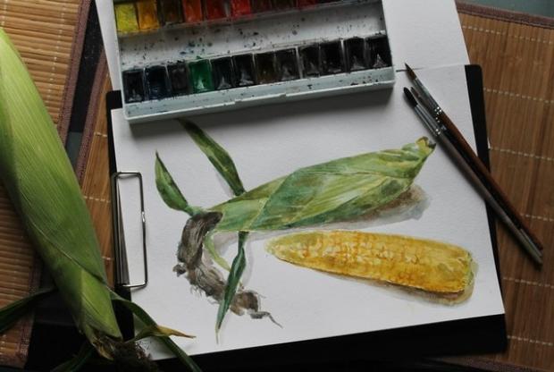 Курс ботанической иллюстрации (акварель) – «Кукуруза» - слайд 1