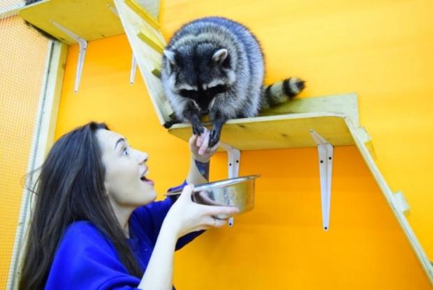В Москве открывается новый контактный зоопарк  - слайд 1