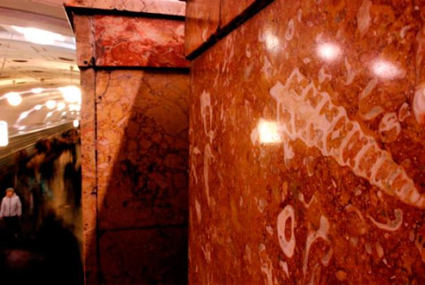 Выставка «Осторожно, двери закрываются! Следующая станция «Юрский период» - слайд 1