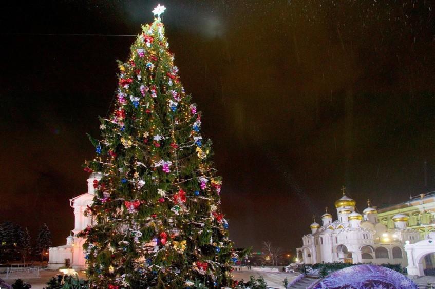Главную новогоднюю ель привезут в Кремль 17 декабря